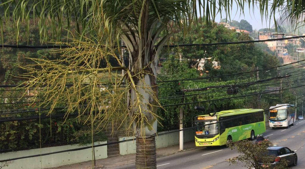 Linas de ônibus estrada da cachoeira